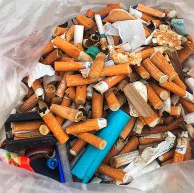 Foto mozziconi giornata mondiale contro il fumo