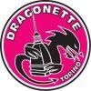 DRAGONETTE TORINO - PDF